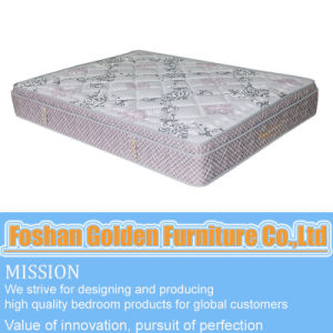 Mattress (6803-2) pictures & photos
