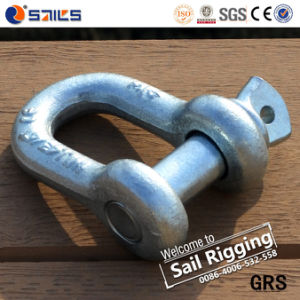 China Supply Factory Price Hot DIP Galvanized US Type Forged Chain D Shackle pictures & photos