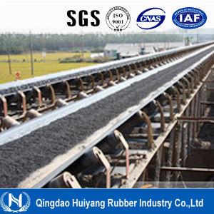 Heat Resistant (SHR) Ep Conveyor Belt pictures & photos