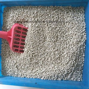 New Arrival High Quality Bentonite Kitty Litter Producer pictures & photos