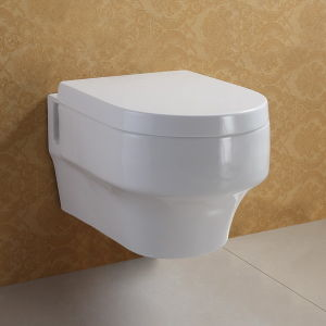Wall Concealed Bathroom Toilet (ATW003)