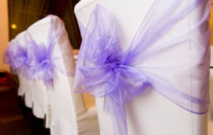 Organza Sash for Decorated pictures & photos