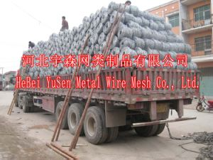 Yusen Razor Barbed Wire Mesh pictures & photos
