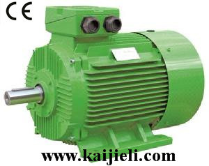 IE2 High Efficiency Three Phase Electric Motor (Green) pictures & photos