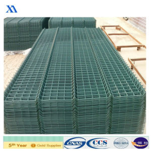 Best Sold to European Clients Welded Wire Mesh Panel (XA-WP15) pictures & photos