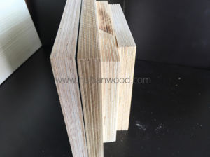 High Quanlity 100% Natural Birch Plywood for Furniture pictures & photos