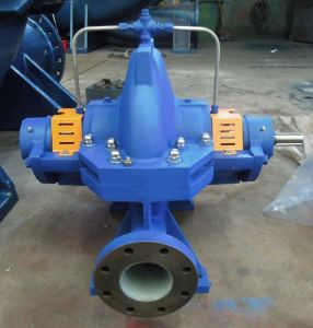 Centrifugal Pump 250s39 pictures & photos