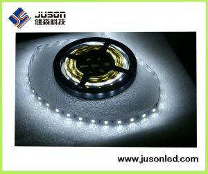 Waterproof DC12V 30LEDs/M 60LEDs/M 5050 LED Strip Flexible pictures & photos