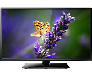 24 Inch Hot Sell Small Size LCD TV Wholesale Price (24L81F)