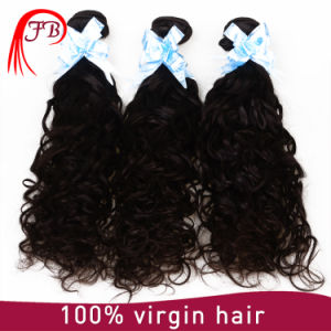 High Quality Brazilian Virgin Remy Human Hair Weave pictures & photos