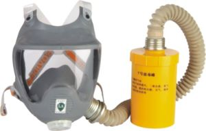 Professional Gas Mask (9800E) pictures & photos