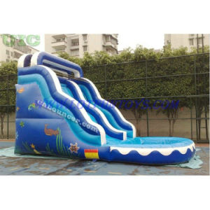 Inflatable Water Bouncer Slide with Pool