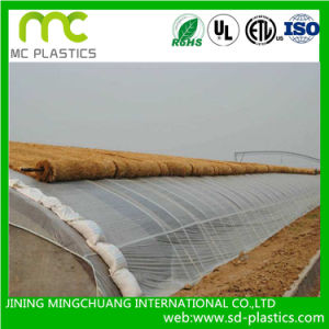 Double Plastic Shed Greenhouse PVC Film pictures & photos