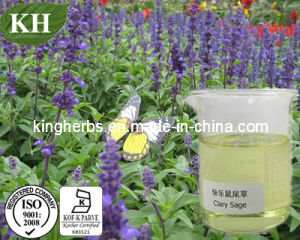 Relaxing Oil; Pure Clary Sage Oil; Pure Oil pictures & photos