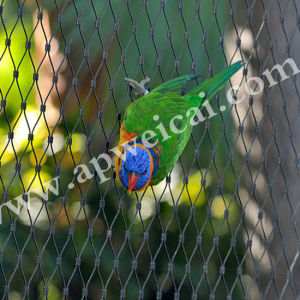 Flowers Fence AISI 304 316 X-Tend Mesh /Balustrade /Cable Mesh Netting/Hand Woven Stainless Steel Ferruled Cable Mesh pictures & photos