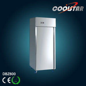 Commercial Refrigerator with Stainless Steel (DBZ600F) pictures & photos