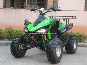 Ew 150cc ATV Quad, CE Approval, Chain, Utility ATV/Quad Wv-ATV018 pictures & photos