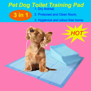 2017 Top Sale 60*60 Super Absorbent Scented Puppy Training Pads pictures & photos