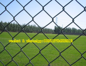 PVC Coated Chain Link Mesh Fence pictures & photos