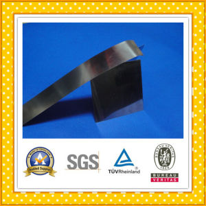 High Quality Stainess Steel Strip Stainless Foil pictures & photos