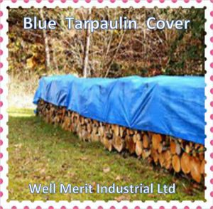 Blue Polyethylene Tarpaulin Rain Cover pictures & photos