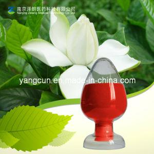 Natural Extract CAS No: 94238-00-3 Gardenia Yellow pictures & photos
