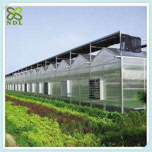 Plastic PC Sheet Cover Green House pictures & photos