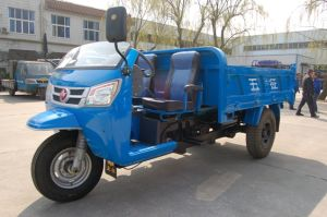 Waw Chinese Diesel Dump Three Wheel Truck for Sale (WD3B3525103) pictures & photos