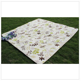 High Quality Newest Flannel Plush Rug (T102) pictures & photos