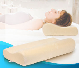 Competitive Price Memory Foam Pillow pictures & photos