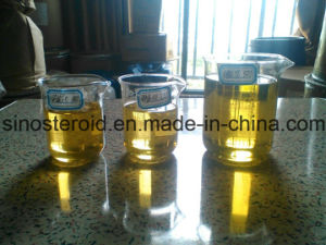 Semi-Finished Steroid Oil Solution Testosterone Phenylpropionate 100 Mg/Ml