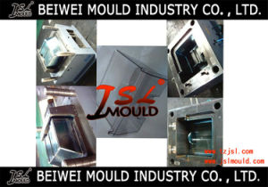 High Polishing Brand Refrigerator Plastic Parts Mould pictures & photos