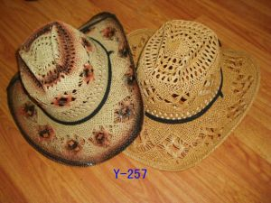 Cowboy Hat pictures & photos