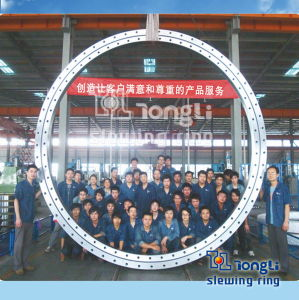 Slewing Ring Swing Bearing with Gear Hardness Gradient with SGS pictures & photos
