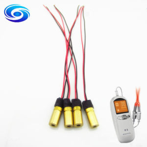 Low Power Red 650nm 1MW 5MW 10MW Laser Module pictures & photos