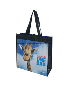 Colorful Handled PP Non Woven Bag pictures & photos