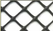 PP 15mm*15mm Anti Bird Netting-Extruded pictures & photos