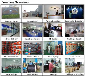 GYTA G652D Aluminum Corrugated Tube 8 Core Fibre Optic Cable pictures & photos