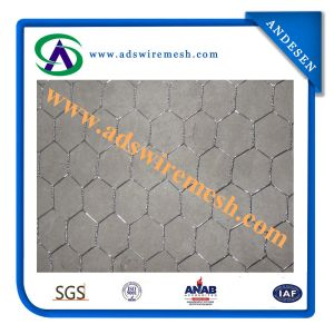 Factory Direct Sale Cheap Galvanized Hexagonal Wire Mesh pictures & photos