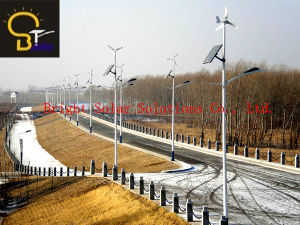 30W LED with Wind-Solar Hybrid Street Lights with 6metres Pole pictures & photos