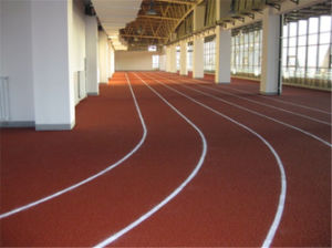 Jogging Athletic Running Track pictures & photos