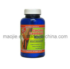 What is the best garcinia cambogia product to buy