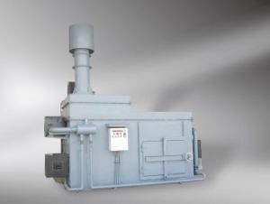 Medical Waste Incinerator for Hospital Use pictures & photos