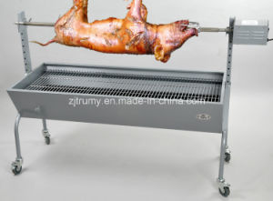 Stainless Steel Spit Roaster (TM-SR2010005) pictures & photos