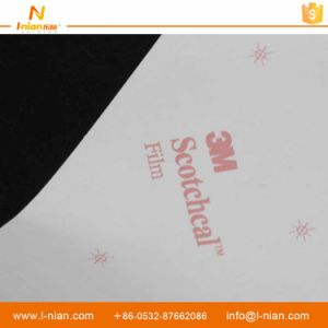 Custom Printing Waterproof Transparent Brand Name Label pictures & photos