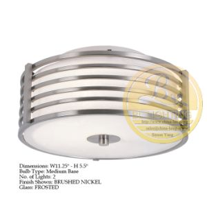 Popular Cheap Hot Sell Cheap Iron Ceiling Lamp for Hotel (TR075-2P)