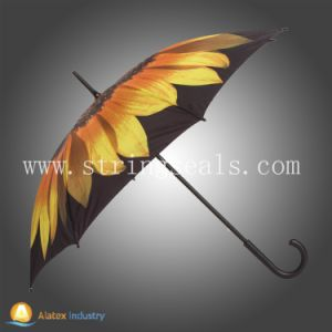 Auto Open Straight Rain Umbrella pictures & photos