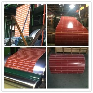Flower Prepainted Galvanized Steel Coil for Building Material Cold Rolled Steel Pipe
