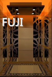 Professional Production of Comfortable and Beautiful Passenger Elevator /Lift pictures & photos