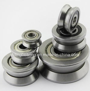 China Motors Parts Roller Bearing LV202-41 pictures & photos